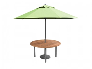 accura umbrella